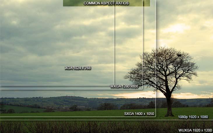 độ phân giải của máy chiếu